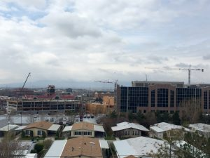 The Carins is emerging as a mid-rise business park. Photo by Isaac Riddle.